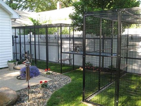 Outdoor Cat House: Cat Enclosures Attached To House